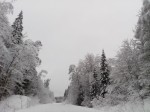 Зимняя дорога. Автор Ю.Рыжова