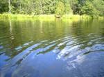 Озеро Немковское