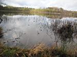 Озеро Киселёвское
