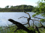 Озеро Быковское
